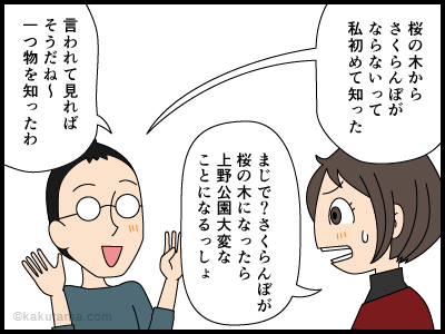 桜からさくらんぼがならないと知る4コマ漫画4
