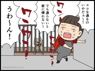 吠える犬との思い出漫画4