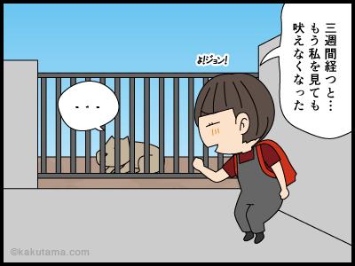 吠える犬に慣れてきて吠えられなくなった漫画3