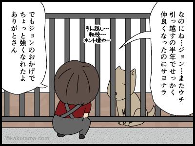 犬のおかげで自信が芽生えた漫画1