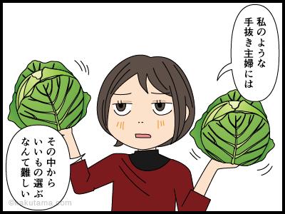 良いキャベツを買おうと思うがわからない主婦の漫画4