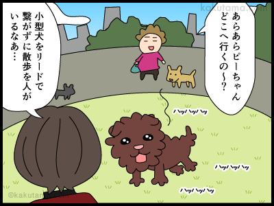 野放しの小型犬に追いかけられる人の漫画1