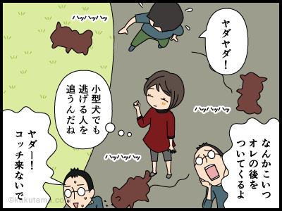 野放しの小型犬に追いかけられる人の漫画3