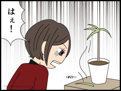 植物にも心がある漫画2
