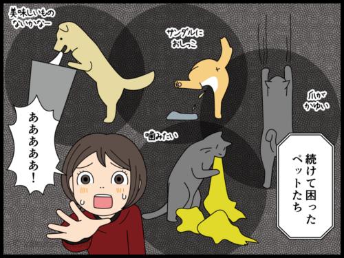 ペットを買いたい人と飼いたくない人の漫画3