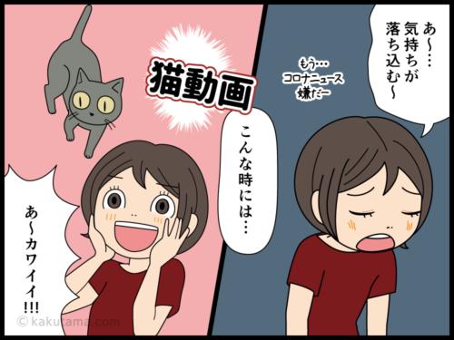 猫動画を見て癒やされる人の漫画2