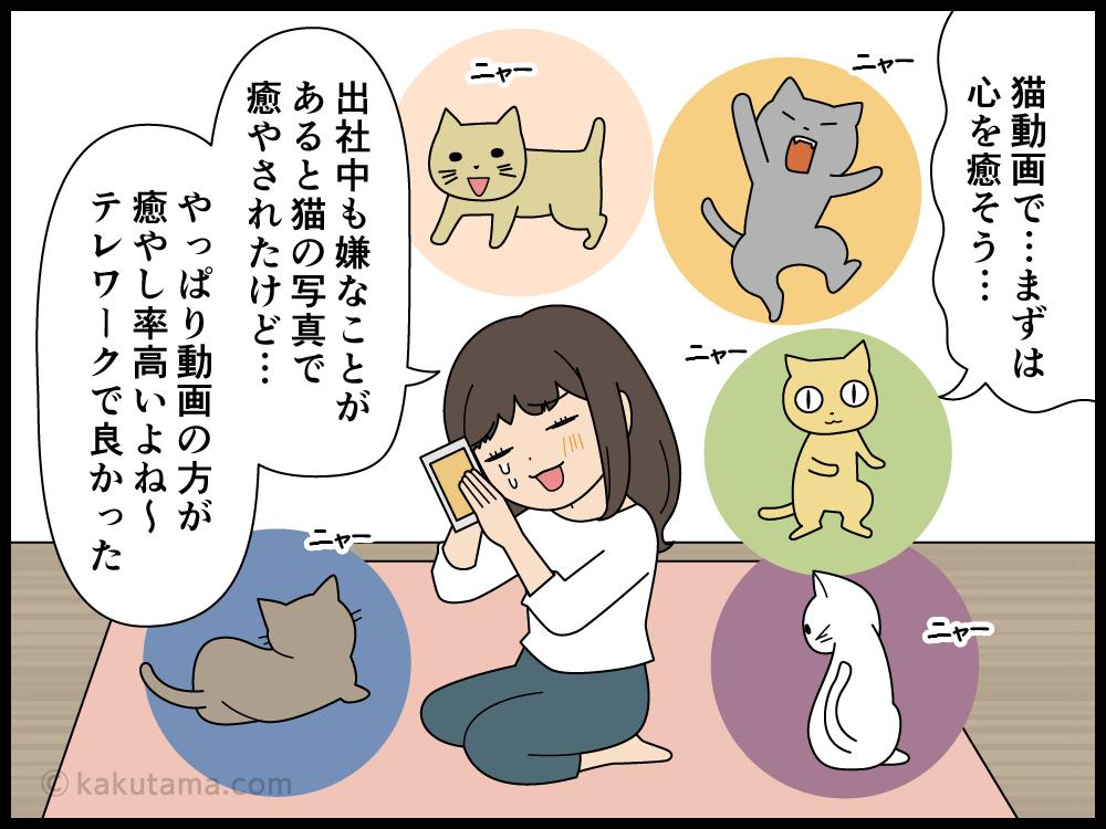 テレワークにイラッときたら猫動画を見て癒やされる派遣社員の漫画4
