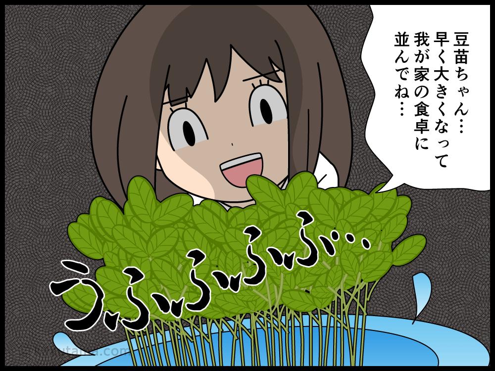 職場には緑が欲しいので豆苗を育てている派遣社員の漫画