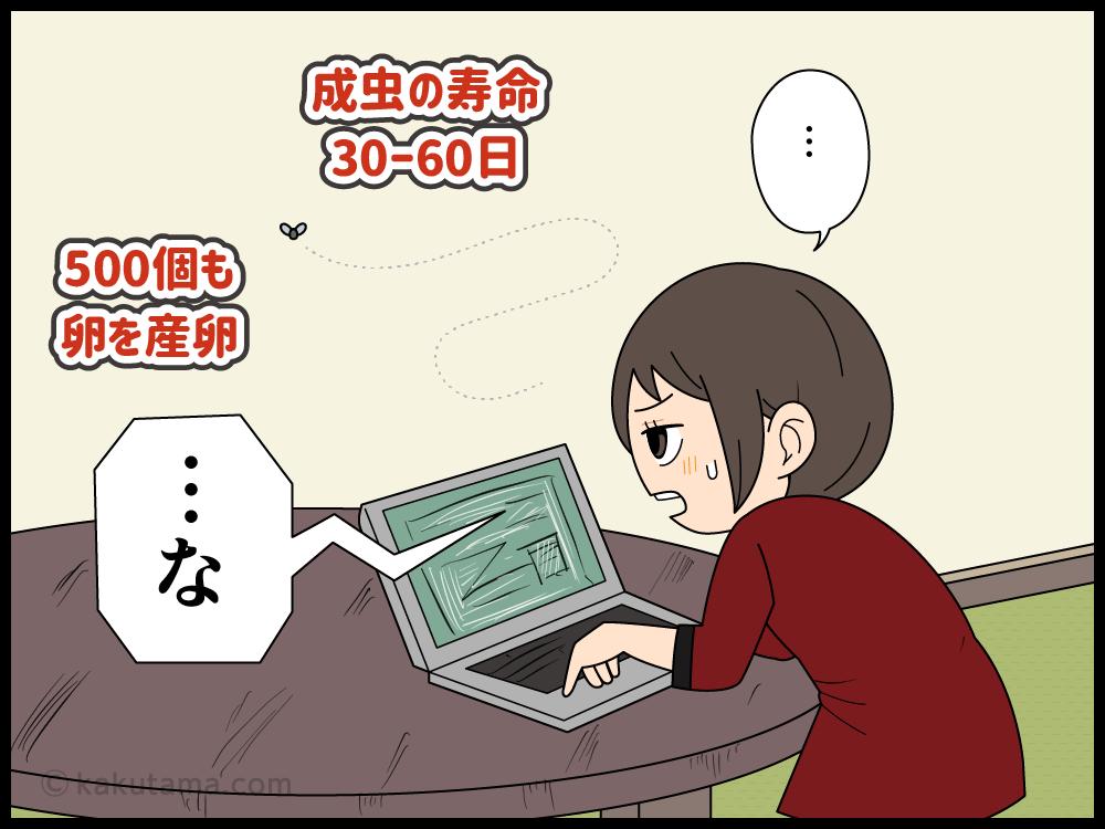 小蝿の寿命を知る主婦の漫画