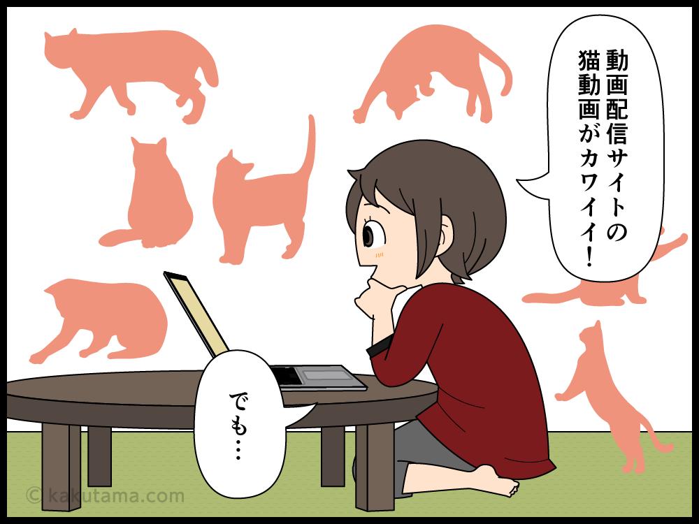 猫動画が流行っているけれど、最近流行りの猫動画がちょっと痛々しい漫画